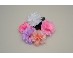 24 Pretty flower on a beak clip. Packed assorted colours as per image. Uncarded